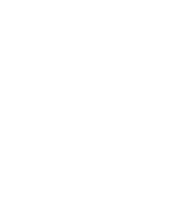 אייקון סוס